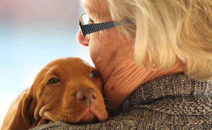 knuffelen met hond in coronatijd