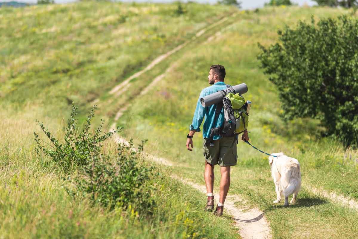 wandelen met de hond in de natuur